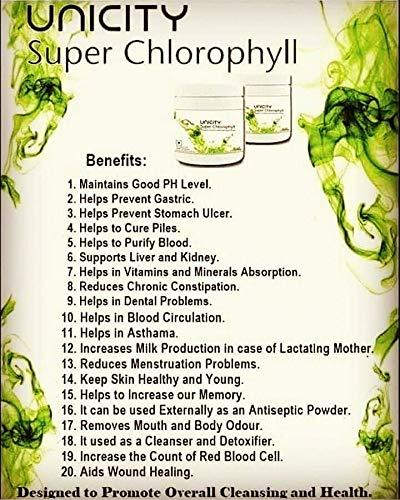 chlorophyll uses